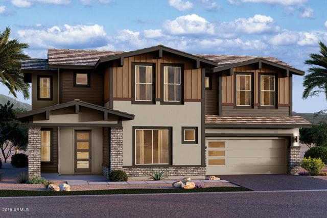 13845 W Sarano Terrace, Litchfield Park, AZ 85340 (MLS #5736666) :: Occasio Realty