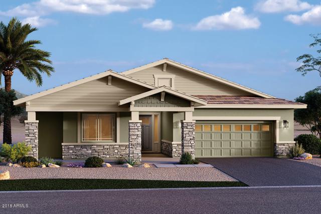 13859 W Sarano Terrace, Litchfield Park, AZ 85340 (MLS #5736677) :: Occasio Realty