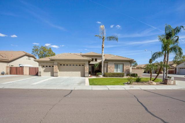 22115 N 80th Avenue, Peoria, AZ 85383 (MLS #5736687) :: The Laughton Team