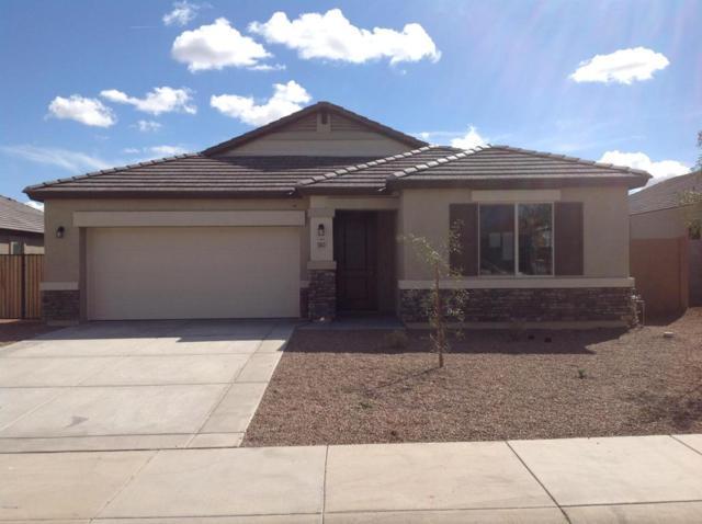 13613 W Briles Road, Peoria, AZ 85383 (MLS #5736813) :: Occasio Realty
