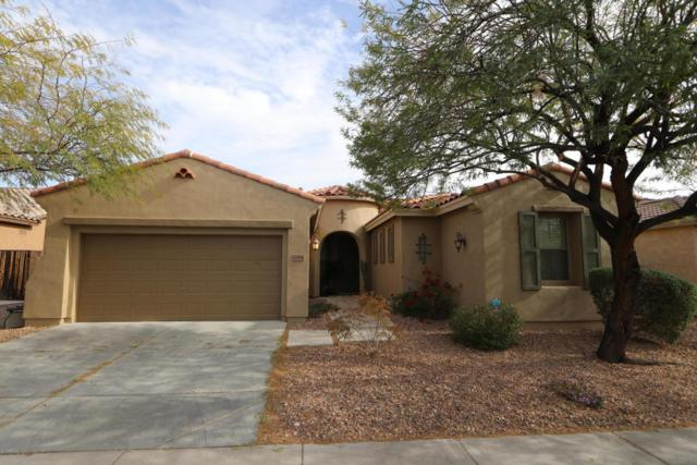 12581 W Miner Trail, Peoria, AZ 85383 (MLS #5736849) :: My Home Group