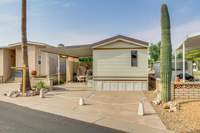 2643 S Seminole Drive, Apache Junction, AZ 85119 (MLS #5736900) :: The Daniel Montez Real Estate Group