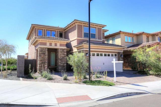4639 E Navigator Lane, Phoenix, AZ 85050 (MLS #5736981) :: Conway Real Estate