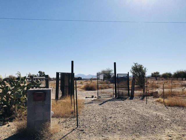 49251 W Mayer Boulevard, Maricopa, AZ 85139 (MLS #5737003) :: Team Wilson Real Estate