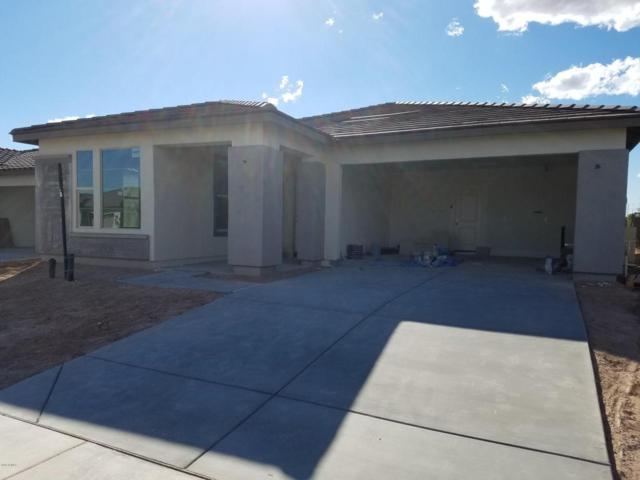 29410 N 132ND Lane, Peoria, AZ 85383 (MLS #5737164) :: Desert Home Premier