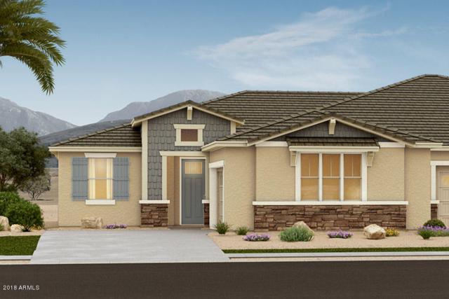 5081 N 145TH Drive, Litchfield Park, AZ 85340 (MLS #5737180) :: The Carin Nguyen Team