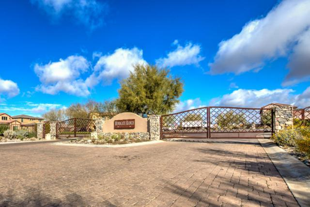 9834 E South Bend Drive, Scottsdale, AZ 85255 (MLS #5737189) :: My Home Group