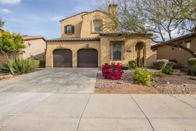 13688 W Jesse Red Drive, Peoria, AZ 85383 (MLS #5737339) :: Occasio Realty