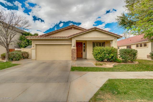 2516 E Fremont Road, Phoenix, AZ 85042 (MLS #5737363) :: Occasio Realty