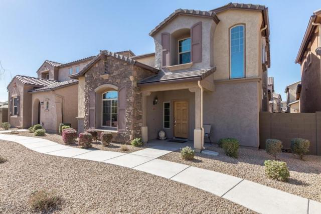 3693 E Zachary Drive, Phoenix, AZ 85050 (MLS #5737430) :: Conway Real Estate