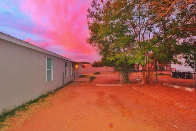 1507 S Cedar Drive, Apache Junction, AZ 85120 (MLS #5737495) :: The Bill and Cindy Flowers Team