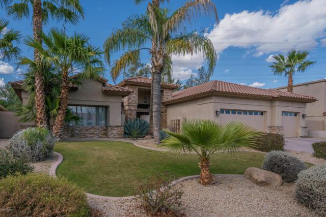 10230 E Cochise Drive, Scottsdale, AZ 85258 (MLS #5737577) :: Occasio Realty