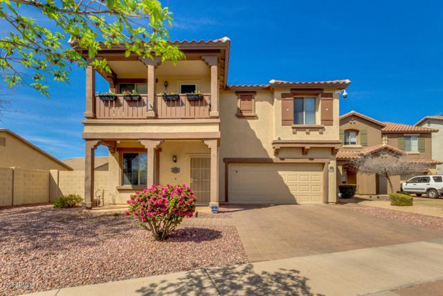 4502 E Harrison Street, Gilbert, AZ 85295 (MLS #5737584) :: The Garcia Group