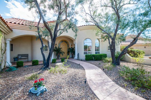 14211 W Greentree Drive S, Litchfield Park, AZ 85340 (MLS #5737778) :: Occasio Realty