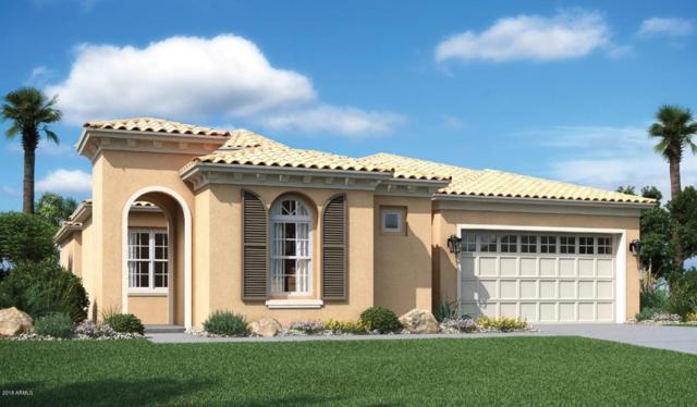 9414 W Meadowbrook Avenue, Phoenix, AZ 85037 (MLS #5737836) :: Occasio Realty