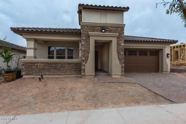 20433 W Park Meadows Drive, Buckeye, AZ 85396 (MLS #5737864) :: Occasio Realty