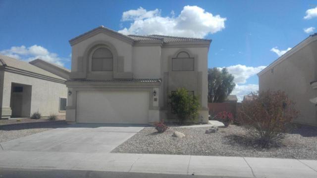 1837 S 217th Avenue, Buckeye, AZ 85326 (MLS #5737872) :: Occasio Realty