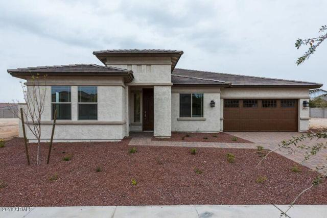 20527 W Delaney Drive, Buckeye, AZ 85396 (MLS #5737882) :: Occasio Realty