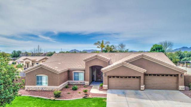 19959 E Julius Road, Queen Creek, AZ 85142 (MLS #5738008) :: The Kenny Klaus Team