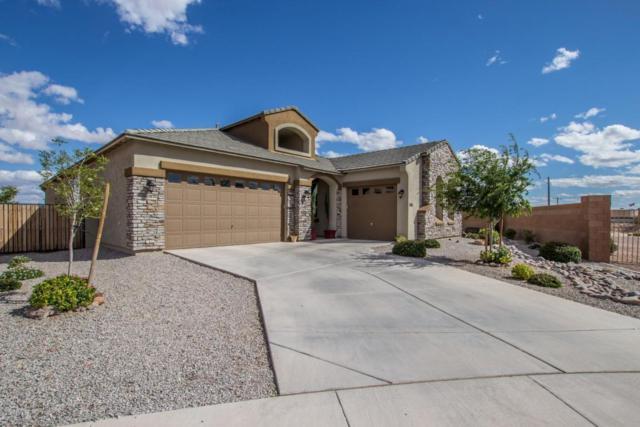23397 S 223RD Way, Queen Creek, AZ 85142 (MLS #5738089) :: The Bill and Cindy Flowers Team