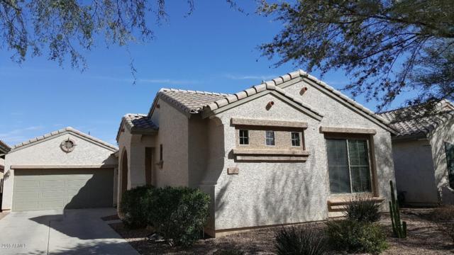 21050 E Duncan Street, Queen Creek, AZ 85142 (MLS #5738097) :: The Bill and Cindy Flowers Team