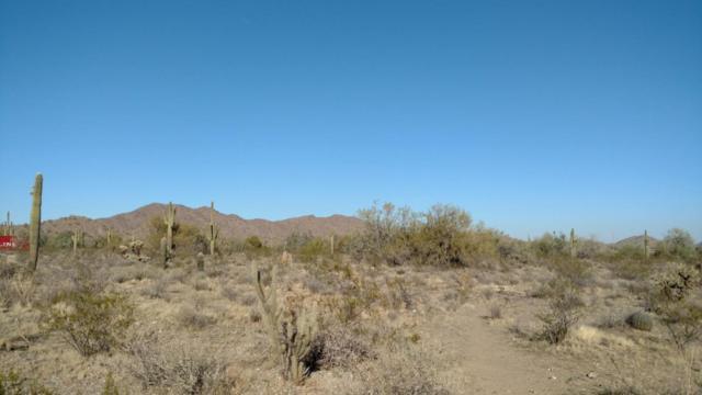 326XX N 167 Avenue, Surprise, AZ 85387 (MLS #5738215) :: Occasio Realty