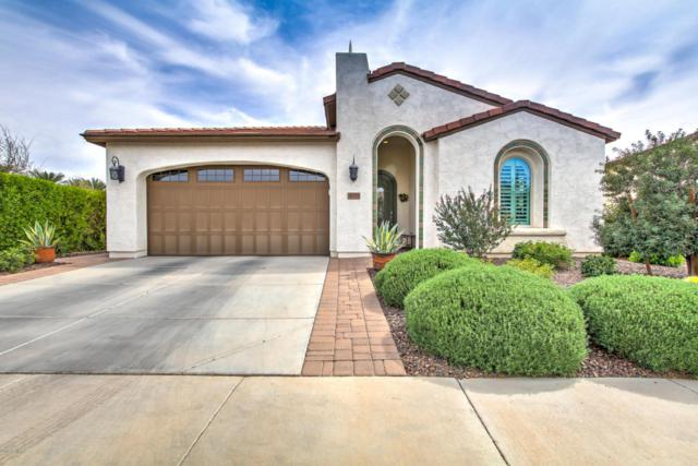 37371 N Wild Barley Path, San Tan Valley, AZ 85140 (MLS #5738226) :: Yost Realty Group at RE/MAX Casa Grande
