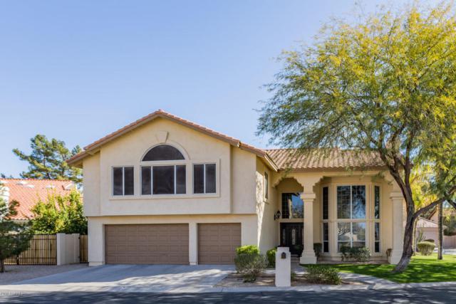 10015 N 55TH Street, Paradise Valley, AZ 85253 (MLS #5738255) :: The Carin Nguyen Team