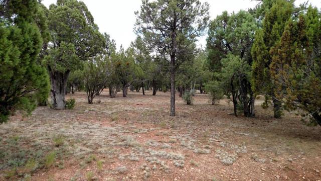 2805 E Air Park Drive, Overgaard, AZ 85933 (MLS #5738272) :: The Garcia Group @ My Home Group