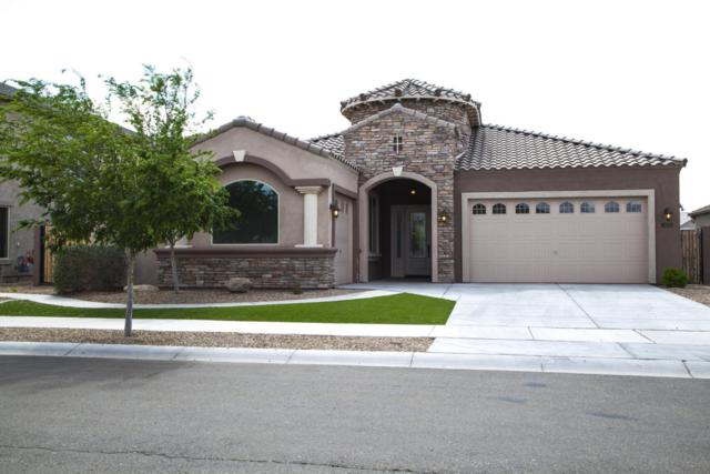 19779 E Raven Drive, Queen Creek, AZ 85142 (MLS #5738281) :: The Kenny Klaus Team