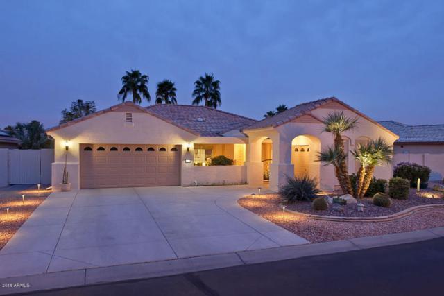 3177 N 150TH Avenue, Goodyear, AZ 85395 (MLS #5738283) :: The Carin Nguyen Team