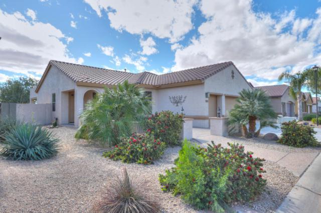 5443 W Pueblo Drive, Eloy, AZ 85131 (MLS #5738286) :: Sibbach Team - Realty One Group