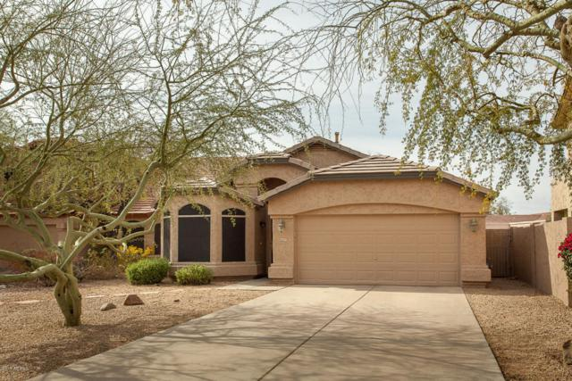 4517 E Melinda Lane, Phoenix, AZ 85050 (MLS #5738374) :: Conway Real Estate