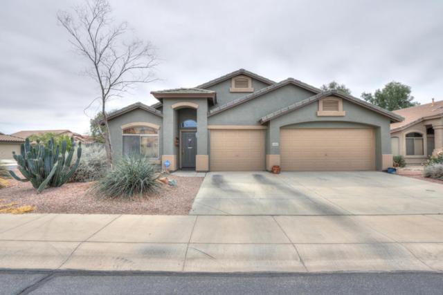 43103 W Hillman Drive, Maricopa, AZ 85138 (MLS #5738492) :: Revelation Real Estate