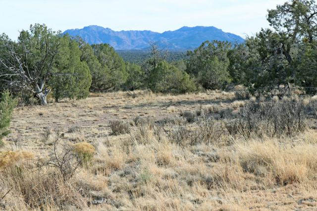 5401 W Dillon Wash Road, Prescott, AZ 86305 (MLS #5738523) :: The Garcia Group @ My Home Group