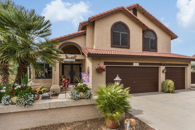 14204 N 66TH Drive, Glendale, AZ 85306 (MLS #5738547) :: Brett Tanner Home Selling Team