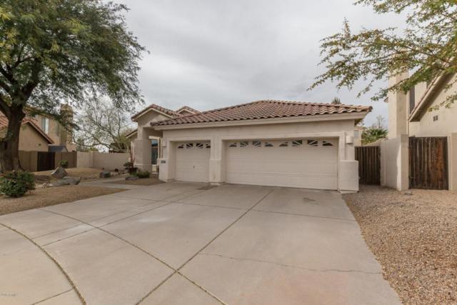 14577 N 99TH Street, Scottsdale, AZ 85260 (MLS #5738561) :: Brett Tanner Home Selling Team