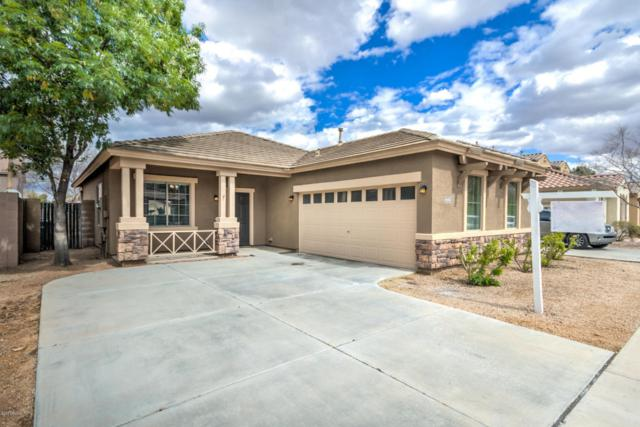 4442 E Oxford Lane, Gilbert, AZ 85295 (MLS #5738572) :: Occasio Realty