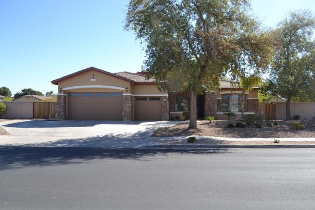 7707 N 84TH Avenue, Glendale, AZ 85305 (MLS #5738592) :: Brett Tanner Home Selling Team