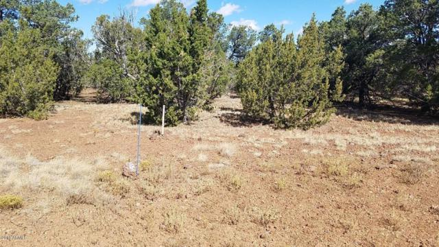 Lot 127 Palomino Circle, Vernon, AZ 85940 (MLS #5738641) :: The Daniel Montez Real Estate Group