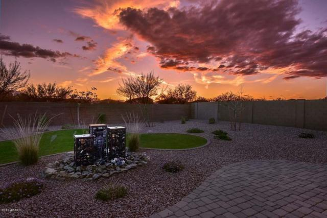 12365 W Tyler Trail, Peoria, AZ 85383 (MLS #5738647) :: The Carin Nguyen Team