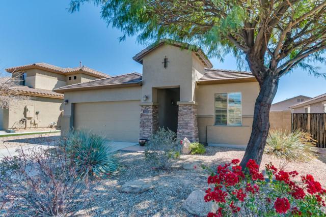 7043 W Lone Tree Trail, Peoria, AZ 85383 (MLS #5738665) :: The Carin Nguyen Team