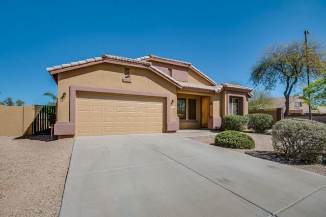 3258 E Tern Court, Gilbert, AZ 85297 (MLS #5738676) :: Arizona Best Real Estate