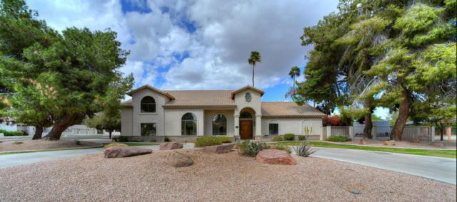 6734 W Evans Drive, Peoria, AZ 85381 (MLS #5738697) :: The Carin Nguyen Team