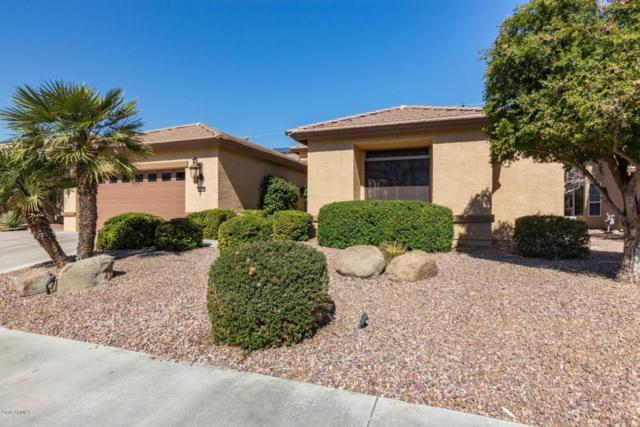 15854 W Edgemont Avenue, Goodyear, AZ 85395 (MLS #5738702) :: The Carin Nguyen Team