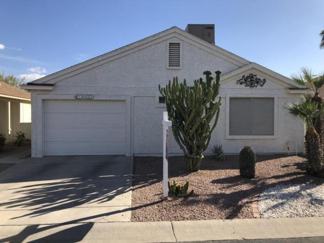 1823 E Riviera Drive, Chandler, AZ 85249 (MLS #5738725) :: The Bill and Cindy Flowers Team