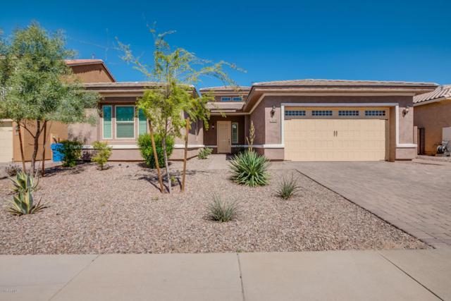 2438 E Lindrick Drive, Gilbert, AZ 85298 (MLS #5738731) :: Arizona Best Real Estate