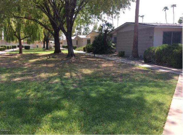 10626 W Granada Drive, Sun City, AZ 85373 (MLS #5738743) :: 10X Homes