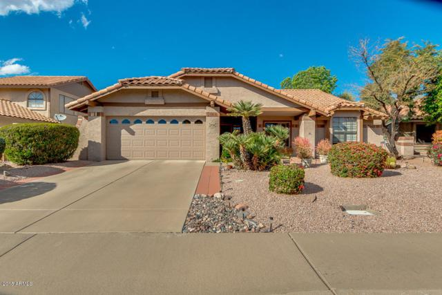 5712 E Hackamore Street, Mesa, AZ 85205 (MLS #5738789) :: The Bill and Cindy Flowers Team