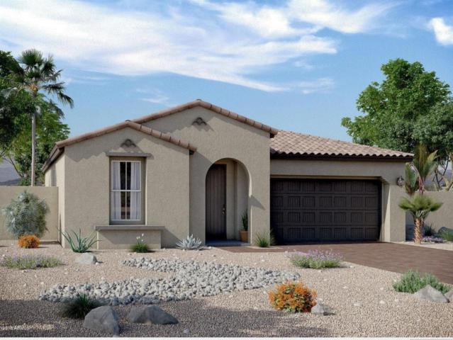 9913 E Acceleration Drive, Mesa, AZ 85212 (MLS #5738797) :: The Bill and Cindy Flowers Team